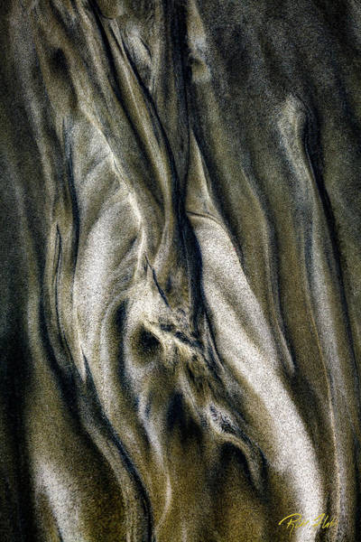 Photograph - Study In Brown Abstract Sands by Rikk Flohr