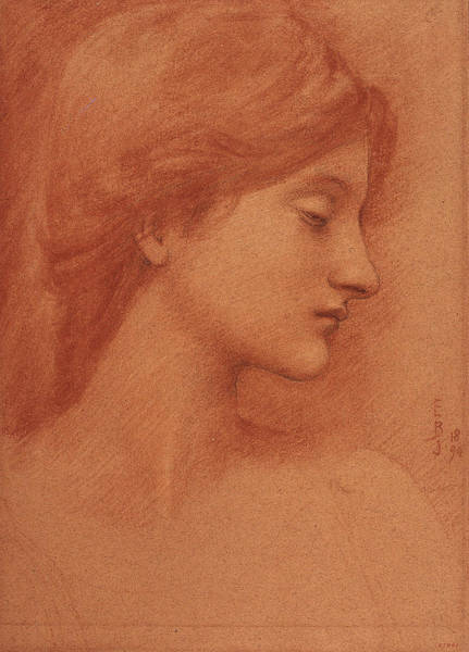 Drawing - Study Of A Female Head by Edward Burne-Jones