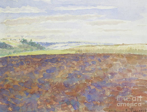 Wall Art - Painting - Study Of A Landscape With A Ploughed Field by Camille Pissarro
