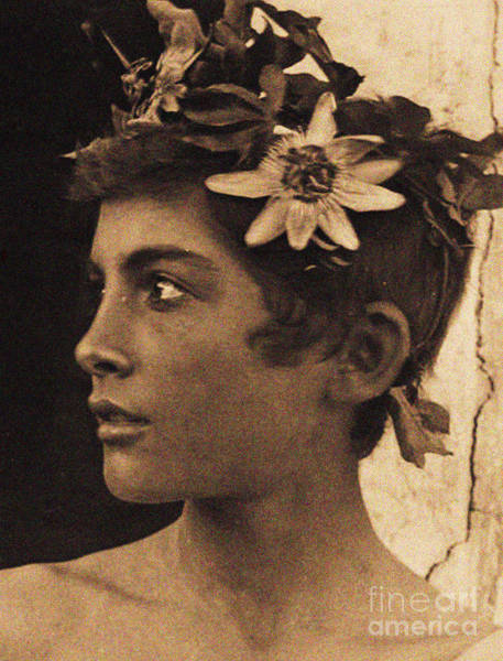 Headband Photograph - Study Of A Sicilian Boy With Passionflowers In His Hair, Sicily, Circa 1899 by Wilhelm von Gloeden