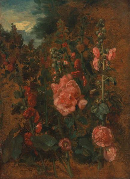 Painting - Study Of Hollyhocks  by John Constable