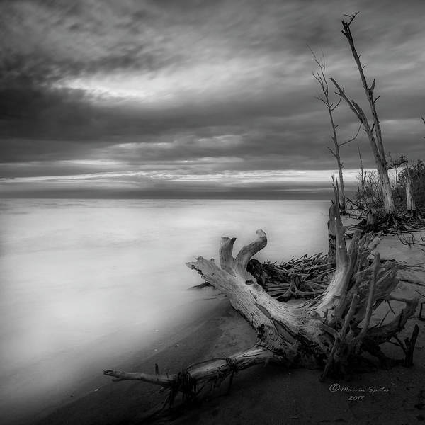 Wall Art - Photograph - Stump Island -bw by Marvin Spates