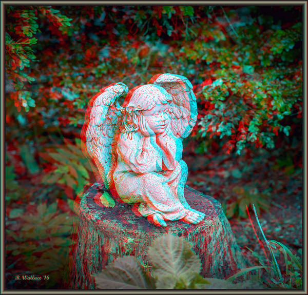 Anaglyph Photograph - Stumped - Use Red-cyan 3d Glasses by Brian Wallace