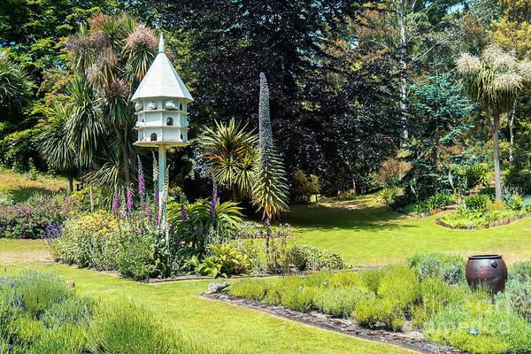 Photograph - stylish English garden  by Ariadna De Raadt