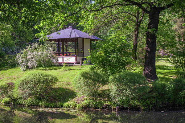 Rights-managed Wall Art - Photograph - Stylish Pavilion  In Japanese Garden by Jenny Rainbow
