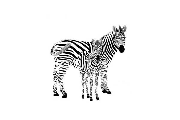 Digital Art - Stylized Zebra With Child by Ramona Murdock
