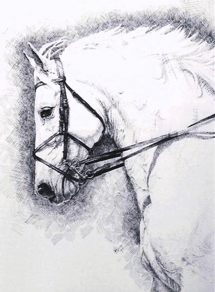 Drawing - Subjugation by Barbara Keith