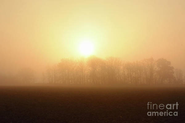 Photograph - Subtle Sunrise by Charles Owens
