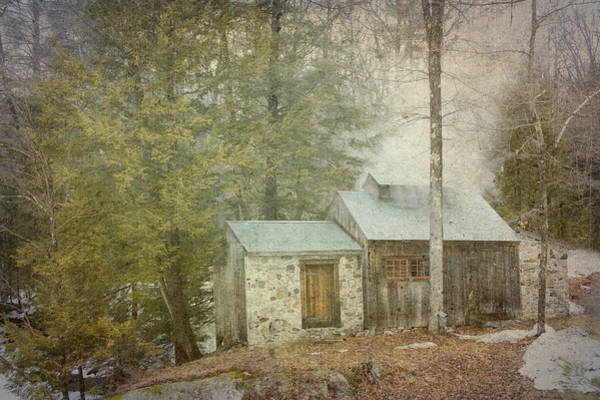 Photograph - Sugar Bear Sugar Shack  by Betty  Pauwels