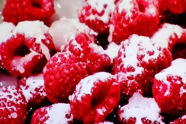 Photograph - Sugar Coated Raspberries by Cynthia Guinn