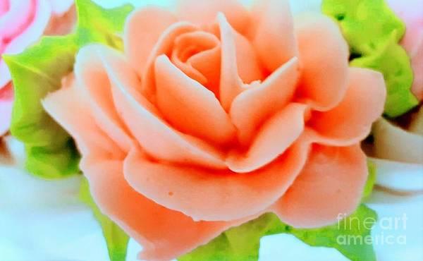 Photograph - Sugar Rose by Rachel Hannah