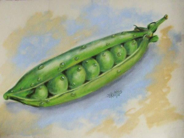 Pastel - Sugar Snap Peas by Barbara Keith