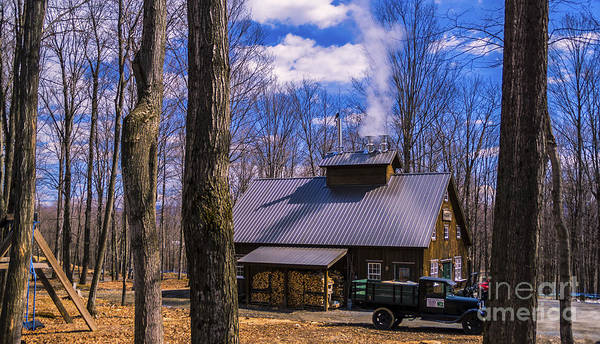 Photograph - Sugarhouse In Vermont by Scenic Vermont Photography