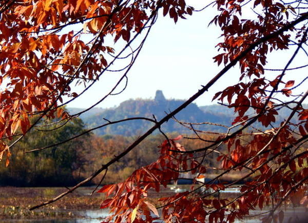 Photograph - Sugarloaf Autumn View by Wild Thing