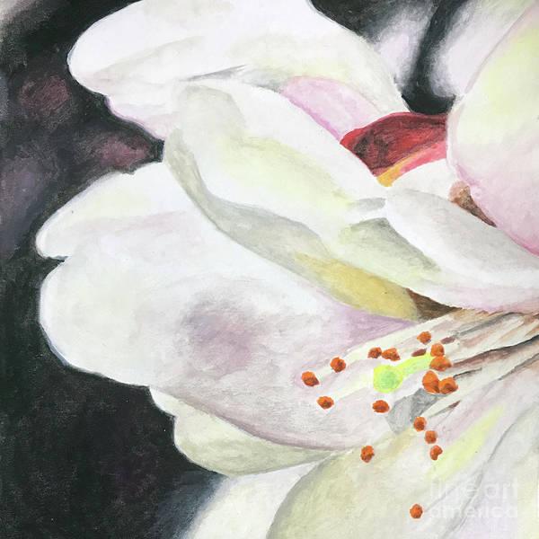 Samantha Painting - Suginami Sakura 3 by Samantha Horne
