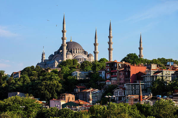 Suleymaniye Mosque Photograph - Suleymaniye Mosque And Traditional Houses In Istanbul by Artur Bogacki