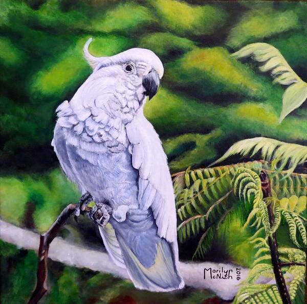 Painting - Sulphur-crested Cockatoo by Marilyn McNish