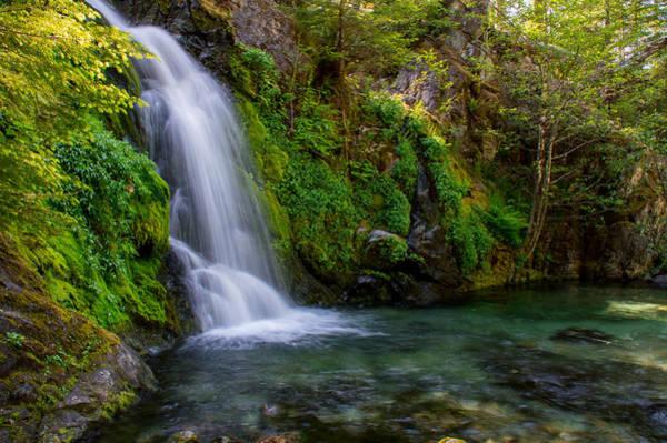 Wall Art - Pyrography - Sullivan Creek Falls  by Lincoln  Weaver