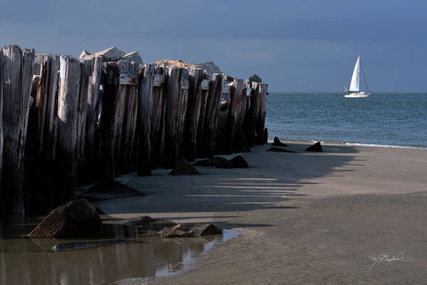 Nikon D5000 Photograph - Sullivans Island 42611-1 by Melissa Wyatt