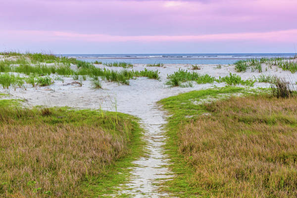 Photograph - Sullivan's Island Natural Beauty by Donnie Whitaker