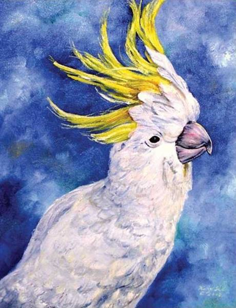 Painting - Sulphur-crested Cockatoo by Ryn Shell