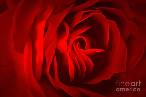 Rose Bud Photograph - Sultry Mood by Krissy Katsimbras