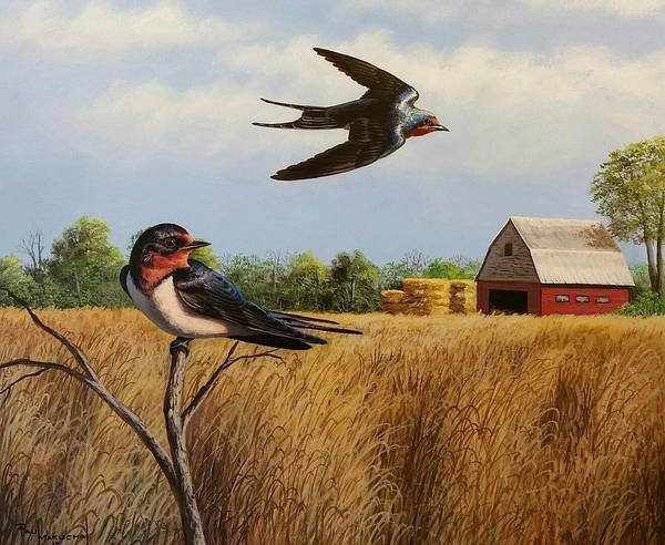 Wall Art - Painting - Summer Afternoon by Paul Makuchal