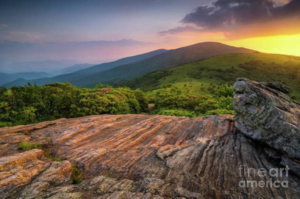 Wall Art - Photograph - Summer Along The Appalachian Trail by Anthony Heflin