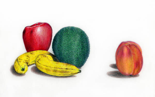 Juicy Drawing - Summer And Winter Fruit by Marilyn Hilliard