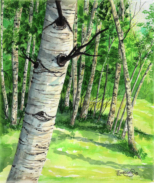 Wall Art - Painting - Summer Aspen by Timithy L Gordon