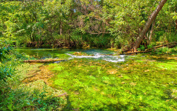 Photograph - Summer At Alley Springs by John M Bailey