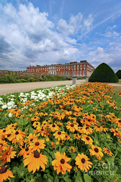 Photograph - Summer At Hampton Court Palace  by Julia Gavin
