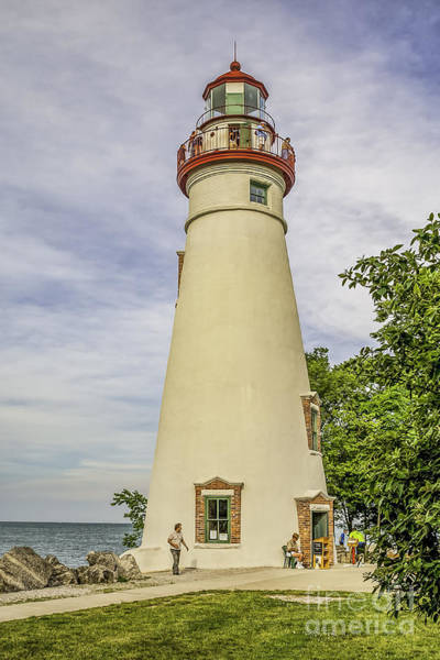 Photograph - Summer At Marblehead by Nick Zelinsky