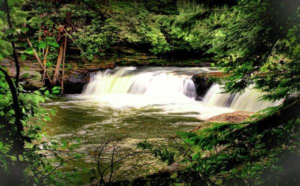 Swallow Falls State Park Wall Art - Photograph - Summer At Swallow Falls by Michael Forte