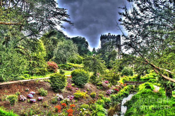 Photograph - Summer Blarney Garden by Beauty For God
