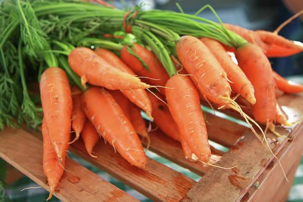 Photograph - Summer Carrots by KG Thienemann