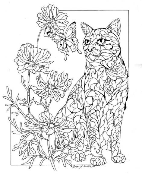 Painting - Summer Cat Outline by Sherry Shipley