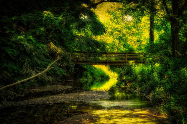 Wall Art - Photograph - Summer Creek by Thomas Woolworth