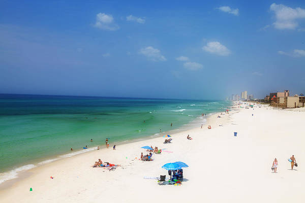 Wall Art - Photograph - Summer Day In Florida by Toni Hopper