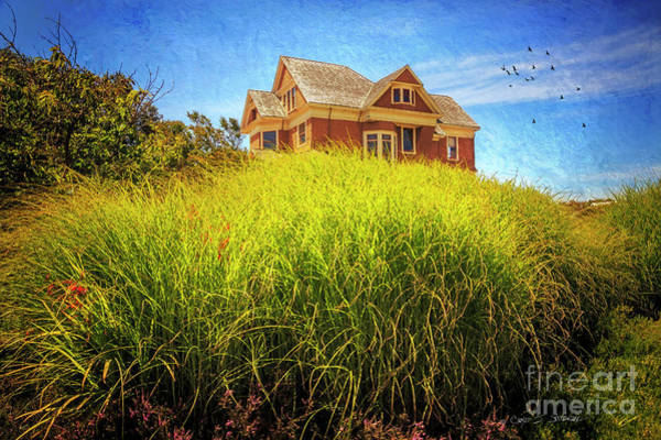 Photograph - Summer Day In Fort Bragg by Craig J Satterlee