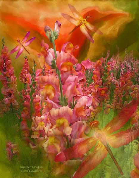 Mixed Media - Summer Dragons by Carol Cavalaris