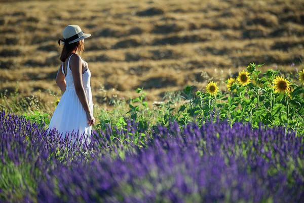 Wall Art - Photograph - Summer Dress by Christian Heeb