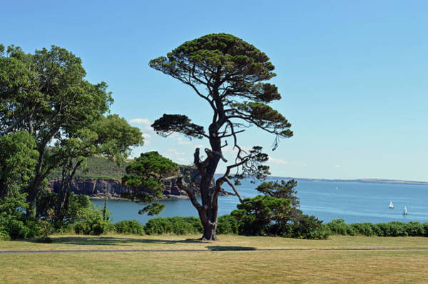 Wall Art - Photograph - Summer Dunmore East by Terence Davis