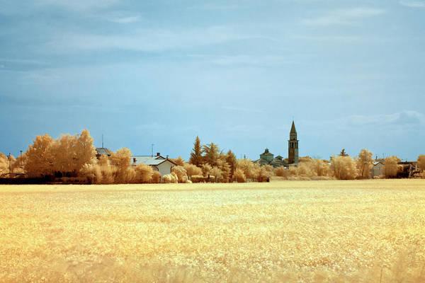 Photograph - Summer Field by Helga Novelli