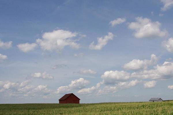 Photograph - Summer Fields II Fc by Dylan Punke