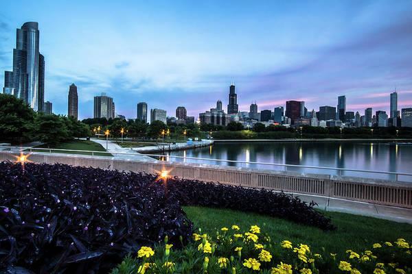 Photograph - Summer Flowers And Chicago Skyline by Sven Brogren