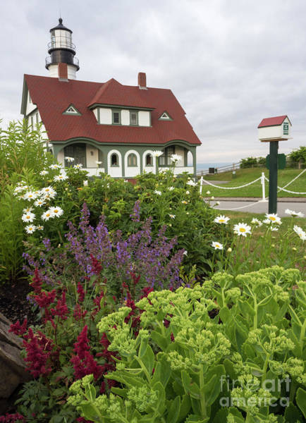 Photograph - Summer Flowers And Portland Head Light #134775 by John Bald