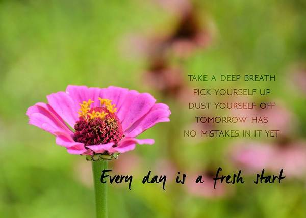 Photograph - Summer Garden Quote by JAMART Photography