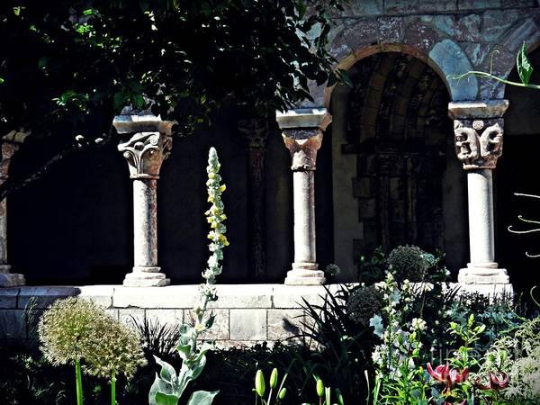 Sarah Loft - Summer Gardens at the Cloisters 6