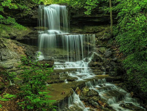 Photograph - Summer Green At West Milton Falls by Dan Sproul